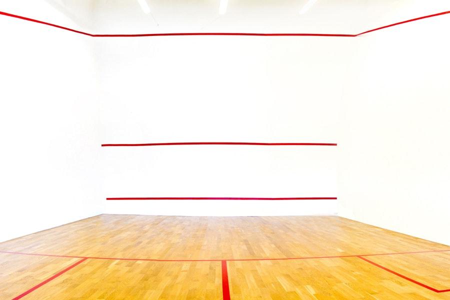 Hotel Stawisko Klaudyn profesjonalne boiska do squasha pod Warszawą